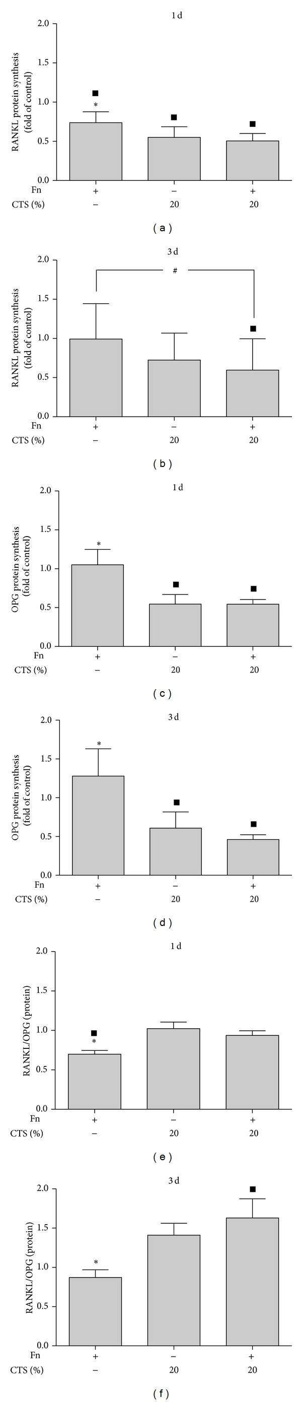 (a and b) Synthesis of RANKL protein in supernatants of PDL cells stimulated by F. nucleatum ATCC 25586 and/or CTSH at 1 day (a) and 3 days (b). (c and d) Synthesis of OPG protein in supernatants of PDL cells stimulated by F. nucleatum ATCC 25586 and/or CTSH at 1 day (c) and 3 days (d). (e and f) RANKL/OPG protein ratio in supernatants of PDL cells stimulated by F. nucleatum ATCC 25586 and/or CTSH at 1 day (e) and 3 days (f). *Significant difference compared to other groups ( P
