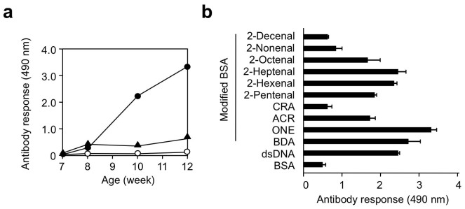 Pyrrolation transforms self-molecules into autoantigens. (a) Elevation of immune response to pyrrolated proteins and dsDNA in the balb/c mice immunized with the pyrrolated MSA. Female balb/c mice were immunized with complete Freund adjuvant and 50 μg of the BDA-modified MSA, and then boosted every 2 weeks with incomplete Freund adjuvant by emulsifying and intraperitoneal injection. The Ab titers were determined by ELISA using the BSA, BDA-modified BSA (pyrrolated BSA), and DNA as the absorbed antigens. Symbols: open circle , anti-BSA titer; closed circle , anti-pyrrolated BSA titer; closed triangle , anti-DNA titer. (b) Immunoreactivity of the anti-pyrrolated proteins mAb PSB established from the balb/c mice immunized with the pyrrolated MSA. The coating antigen was prepared by incubating BSA (1 mg/ml) with 1 mM aldehyde in 1 ml of PBS for 24 h at 37°C. Five microgram of antigen was coated per well on polystyrene plates and antibody binding detected. CRA, crotonaldehyde, ACR, acrolein; ONE, 4-oxo-2-nonenal; BDA, 1,4-butanedial.