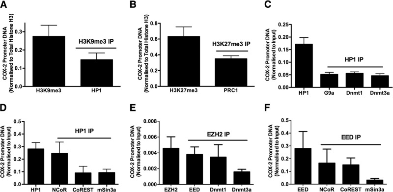 HP1, PRC1, and repressive epigenetic enzymes are associated with the COX-2 promoter in F-IPFs. Confluent F-IPFs were serum starved for 24 h. The protein-DNA complexes were cross-linked by formaldehyde treatment, and chromatin pellets were extracted and sonicated. H3K9me3 ( A ), H3K27me3 ( B ), HP1 ( C and D ), EZH2 ( E ), and EED ( F ) were immunoprecipitated with specific antibodies first, and then the IPs were immunoprecipitated again with antibodies against HP1 ( A ), PRC1 ( B ), G9a ( C ), Dnmt1, Dnmt3a ( C and E ), EED ( E ), and NCoR, CoREST, and mSin3a ( D , F ). The associated COX-2 promoter DNA was amplified by real-time PCR, and the amount was calculated and normalized to input control. Data are expressed as means ± sem from experiments with 6 separate F-IPF cell lines performed in duplicate.
