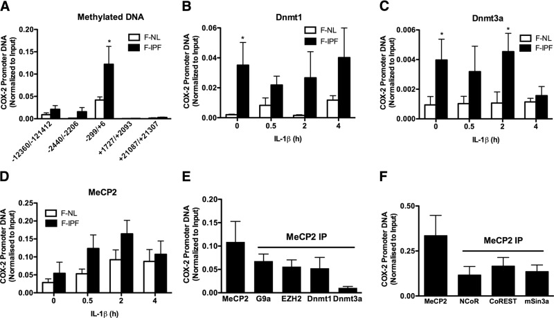 COX-2 promoter DNA methylation and Dnmt association with the COX-2 promoter are increased in F-IPFs. A ) Confluent F-NLs and F-IPFs were serum starved for 24 h and then lysed. DNA was extracted. Methylated DNA was immunoprecipitated with an antibody against 5-methylcytosine. The associated DNA was amplified by real-time PCR using specific primers for different regions of the COX-2 promoter and its upstream and downstream regions. B–D ) Confluent and serum-starved F-NLs and F-IPFs were incubated with IL-1β (1 ng/ml) for the times indicated. The protein-DNA complexes were cross-linked by formaldehyde treatment, and chromatin pellets were extracted and sonicated. Dnmt1 ( B ), Dnmt3a ( C ), and MeCP2 ( D ) were immunoprecipitated with specific antibodies. The associated COX-2 promoter DNA was amplified by real-time PCR, and the amount was calculated and normalized to input control. E , F ) Confluent F-IPFs were serum starved for 24 h. The protein-DNA complexes were cross-linked by formaldehyde treatment, and chromatin pellets were extracted and sonicated. MeCP2 was immunoprecipitated with specific antibody first, and then the IPs were immunoprecipitated again with antibodies against G9a, EZH2, Dnmt1, and Dnmt3a ( E ) and NCoR, CoREST, and mSin3a ( F ). The associated COX-2 promoter DNA was amplified by real-time PCR, and the amount was calculated and normalized to input control. Data are expressed as means ± sem from experiments with 6 separate F-NL and/or F-IPF cell lines performed in duplicate. * P