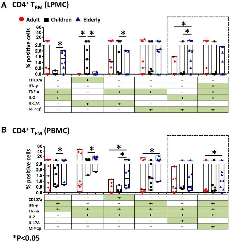 Multifunctional gastric LPMC CD4 + T RM and PBMC CD4 + T EM responses to SEB stimulation in adults, children, and the elderly . Multifunctionality was determined by simultaneous detection of two or more functions performed by CD4 + T RM (LPMC) or CD4 + T EM (PBMC). Six functions were evaluated: production of five cytokines/chemokines (IFN-γ, TNF-α, IL-2, IL-17A, MIP-1β) and expression of CD107a in response to SEB stimulation. (A) Scatter plot showing the six predominant function patterns in LPMC CD4 + T RM and (B) in PBMC CD4 + T EM cells from adults (red circles, n = 9), children (black squares, n = 7), and the elderly (blue triangles, n = 8). Multifunctionality was analyzed using the FCOM feature of WinList. Significant differences between age groups were denoted by asterisks (* p