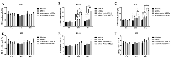 bMSC-derived Wnt5a promotes the maturation of HL60 cells. (A–C) The expression of CD13, CD14 and CD68 was evaluated by <t>immunohistochemical</t> staining assay following the culture of HL60 cells with conditional medium and the culture supernatants of bMSCs, adeno-vector bMSCs and adeno-Wnt5a bMSCs for 0, 24 and 48 h. (D–F) Immunohistochemical staining for CD13, CD14 and CD68 following the culture of HL60 cells with conditional medium and the culture supernatants containing Wnt5a neutralization antibodies against bMSCs, adeno-vector BMSCs and adeno-Wnt5a BMSCs for 0, 24 or 48 h. * P
