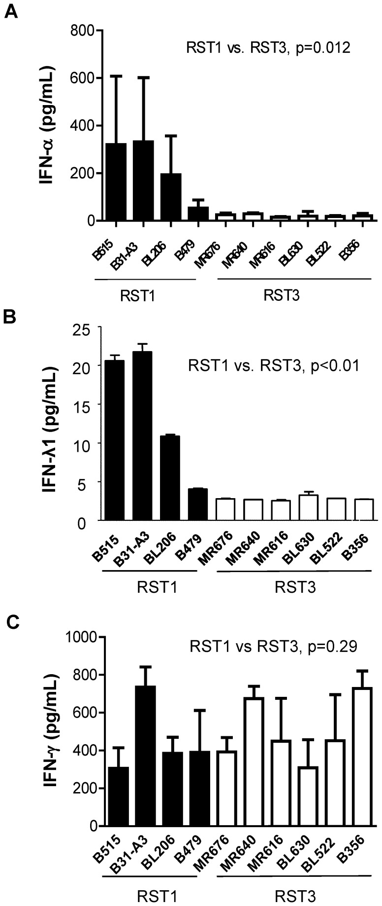 RST1 isolates induce expression of multiple interferons. Human PBMCs (4×10 6 ) were co-incubated for 20 hrs with RST1 (black bars) or RST3 (white bars) B. burgdorferi clinical isolates (4×10 7 ) (MOI = 10∶1). Concentrations of human IFN-α ( A ), IFN-λ1/IL29 ( B ), or IFN-γ ( C ) proteins in cell-free culture supernatants were quantitated by ELISA ( A , B ) or cytometric bead array ( C ). Columns represent the mean ± SD of values from three blood donors assessed in independent experiments, with the exception of ( B ) which represents results from a single donor. Statistical analysis was performed using a non-parametric, two-tailed Mann-Whitney U-test.