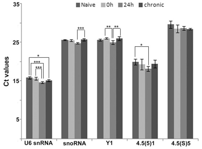 Levels of five non-coding RNAs candidate reference genes for microRNA qRT-PCR analysis in the hippocampus of the systemic PILO-injected and control rats. Values are given in the form of RT-qPCR threshold cycle numbers (Ct values), mean SD (n = 6). ANOVA, * , ** , *** .