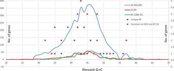 Distribution of GC content in B. fragilis 638R genes. No. of genes with GC percentage indicated on Y-axis. Blue line: B. fragilis 638R genes. Green line: B. fragilis 638R essential genes. Red line: B. fragilis 638R essential genes that are common to other B. fragilis species . Red dots: B. fragilis 638R essential genes unique to B. fragilis 638R. Blue Dots: B. fragilis 638R essential genes with matches in the DEG but not to P. gingivalis or B. thetaiotaomicron . Note: The lines are mapped to the primary Y-axis and the dots to the secondary (right side) Y-axis.