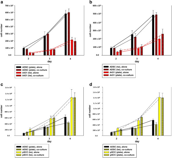 Effect of ADSC-SCC-co-culture on cells' proliferative activity. (a) The growth of ADSCs on the plate significantly increased ( P = 0.038) in co-culture with A431-SCCs in the transwell insert compared to mono-culture. The growth of co-cultured A431-SCCs in the transwell insert was not significantly affected ( P > 0.05). (b) ADSC-SCC-co-culture with A431-SCCs on the six-well plate and ADSCs in the transwell insert did not significantly affect cell growth of both cell types ( P > 0.05). (c) ADSC-SCC-co-culture with ADSCs on the six-well plate and pSCCs in the transwell insert significantly reduced ADSCs' growth compared to mono-culture ( P = 0.03). The proliferative activity of pSCCs in co-culture was not affected ( P > 0.05). (d) ADSC-SCC-co-culture with pSCCs on the six-well plate and ADSCs in the transwell insert significantly decreased the growth of pSCCs ( P
