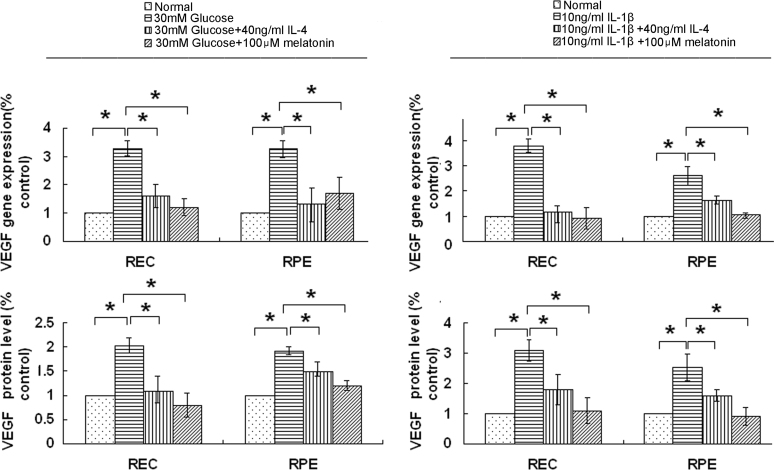 Interleukin-4 (IL-4) and melatonin downregulated the expression of vascular endothelial growth factor (VEGF). Human retinal endothelial cells (RECs) and retinal pigment epithelial (RPE) cells were cultured to a state of subconfluency and then maintained in human endothelial-serum free medium (HE-SFM) or Dulbecco's Modified Eagle Medium (DMEM) that contained 1% serum for 24 h for synchronization. The cells were then exposed to D-glucose (30 mM; 48 h incubation) or interleukin-1β (IL-1β; 10 ng/ml; 24 h incubation) in the presence or absence of IL-4 (40 ng/ml) or melatonin (100 μM). Total RNA was extracted, and the supernatants were harvested. VEGF expression was analyzed using quantitative real-time PCR (qPCR) and enzyme-linked immunosorbent assay (ELISA), respectively. The data are expressed as the mean±standard deviation (SD; n = 4; *p