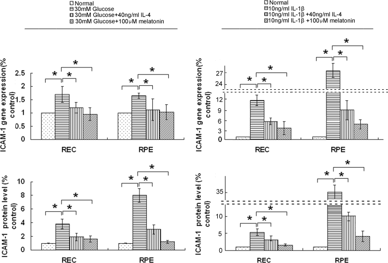 Interleukin-4 (IL-4) and melatonin downregulated the expression of intercellular cell adhesion molecule-1 (ICAM-1) induced with D-glucose or interleukin-1β. After D-glucose (30 mM; 48 h incubation) or interleukin-1β (IL-1β; 10 ng/ml; 24 h incubation) induction with or without IL-4 (40 ng/ml) or melatonin (100 μM), total RNA was extracted from the human retinal endothelial cells (RECs) and retinal pigment epithelial (RPE) cells, and the supernatants were harvested for quantitative real-time <t>PCR</t> <t>(qPCR)</t> and enzyme-linked immunosorbent assay (ELISA) to measure the levels of ICAM-1 mRNA and protein, respectively. The mRNA and protein levels of ICAM-1 increased significantly after induction with D-glucose or IL-1β, but were significantly downregulated by IL-4 and melatonin. The data are expressed as the mean± standard deviation (SD; n = 4; *p