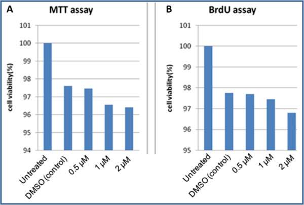 Effect of SD-208 on the cell growth and proliferation of the SW-48 cells. SW-48 cells were treated by 0.5, 1 and 2 μM for 48 h. Cell proliferation was examined by MTT and BrdU assays as described in methods. A : MTT assay of SW-48 cells after treatment with SD-208 in comparison with controls (untreated and treated with DMSO). B : BrdU assay of SW-48 cells after treatment with SD-208 comparison with controls (untreated and treated with DMSO). All data are reported as the percentage change in comparison with the controls, which were arbitrarily assigned 100% cell proliferation. Analysis of one-way ANOVA was used to compare the cell proliferation of SW-48 cells in different concentrations of SD-208 to control. P value