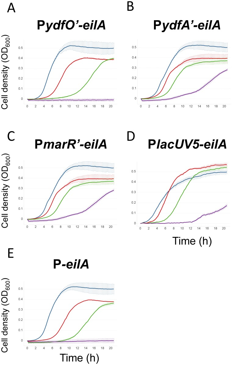 Growth of different eilA expression strains at increasing [C 2 mim]Cl concentrations. A–E: growth assays of E. coli DH10B carrying different promoter- eilA constructs. Due to day-to-day variability in the final cell density reached in the microtiter-plate experiments, growth curves were normalized to a start OD of 0 and a maximum OD of 0.5. A) pP ydfO' - eilA , B) pP ydfA'-eilA , C) pP marR'-eilA , D) pP lacUV5-eilA, E) pP- eilA . Error bars represent standard errors. Blue: 0 mM [C 2 mim]Cl, red: 100 mM [C 2 mim]Cl, green: 200 mM [C 2 mim]Cl, purple: 400 mM [C 2 mim]Cl.