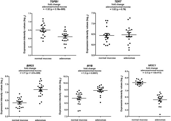 Transcript levels in colorectal adenomas and normal mucosa for the five target (hub) genes in the TF network shown in Figure 7 . Scatter plots of normalized log 2 expression intensity values (y-axis) obtained by Affymetrix Exon 1.0 array analysis of 17 colorectal adenomas and their corresponding samples of normal mucosa. Means and standard errors are represented by horizontal lines and t-bars, respectively. Mean fold changes in adenomas (vs. normal mucosa) are shown for each gene.
