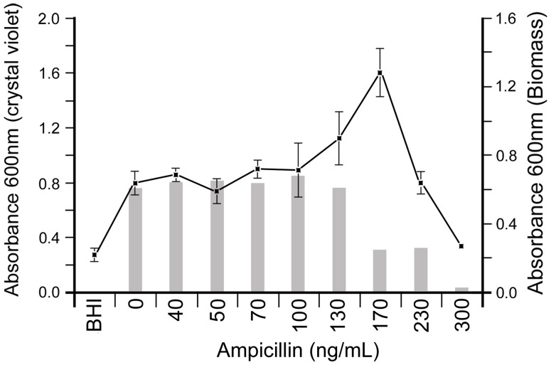 PittGG biofilm formation is stimulated by ampicillin in a narrow concentration range. Crystal violet assay of 1-day PittGG <t>biofilms,</t> formed in the presence of increasing amounts of ampicillin up 300 ng/mL, showed a stimulation of biofilm formation at 170 ng/mL concentration.