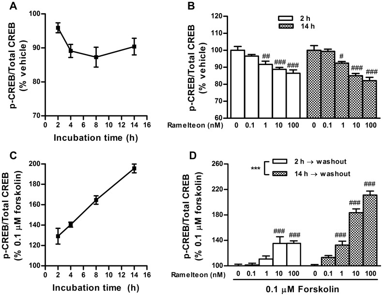 Duration-dependent changes in CREB phosphorylation during ramelteon treatment and after washout. (A) INS-1 cells were treated with ramelteon (10 nM) for 2, 4, 8, or 14 h. (B) Concentration-dependent decreases in CREB phosphorylation were assessed after ramelteon (0.1–100 nM) treatment for 2 and 14 h. (C) After ramelteon (10 nM) treatment for 2, 4, 8, or 14 h, the cells were washed twice and stimulated with forskolin (0.1 µM) for 30 min in the absence of ramelteon. (D) Concentration-dependent potentiation of forskolin-stimulated CREB phosphorylation was assessed after ramelteon (0.1–100 nM) treatment for 2 and 14 h. Values are expressed as the ratio of phosphorylated CREB to total CREB in the vehicle-pretreated control (100%). Data are presented as means ± SEM (n = 3) and were analyzed using 2-way analysis of variance followed by Dunnett's test. *** P