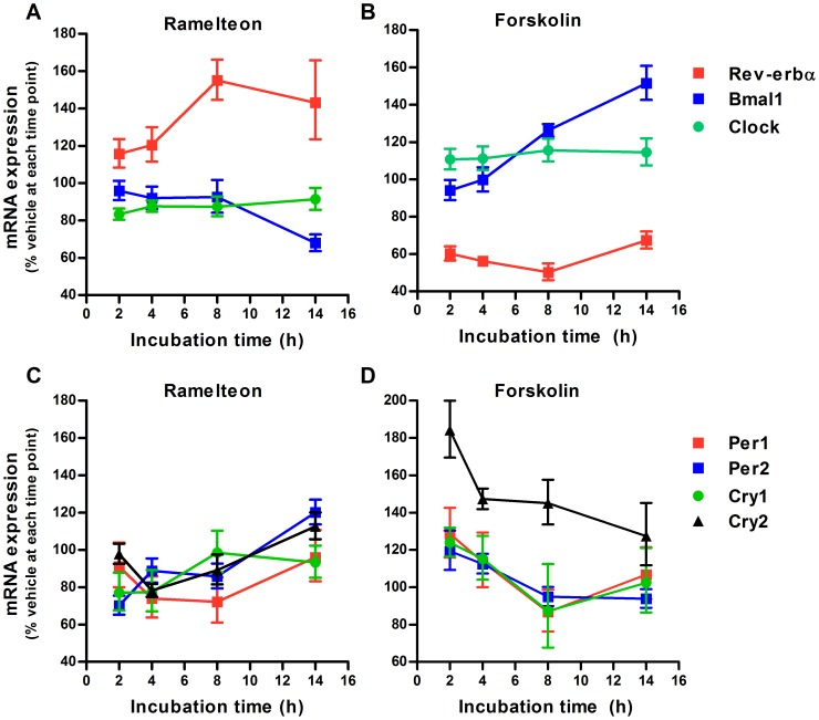 Duration-dependent changes in ramelteon-induced clock gene expression. INS-1 cells were treated with ramelteon (A and C; 10 nM) and forskolin (B and D; 0.1 µM) for 2, 4, 8, and 14 h. mRNA expression of Rev-erbα , Bmal1 , Clock , Per1 , Per2 , Cry1 , and Cry2 was assessed using TaqMan polymerase chain reaction and normalized to that of the housekeeping gene cyclophilin A. Values are expressed as a percentage of the vehicle-treated control at each time point. Data are presented as means ± SEM (n = 4).