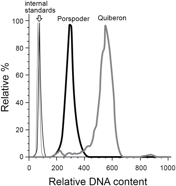 Example flow cytometric analysis of spore ploidy, showing histograms of Sybr Green I fluorescence (DNA content). Grey lines show a representative Quiberon sporophyte and black lines show a representative Porspoder sporophyte. In both cases the thick lines represent spores, and thin lines represent the internal standard ( Emiliania huxleyi cells) added to the same sample during staining.