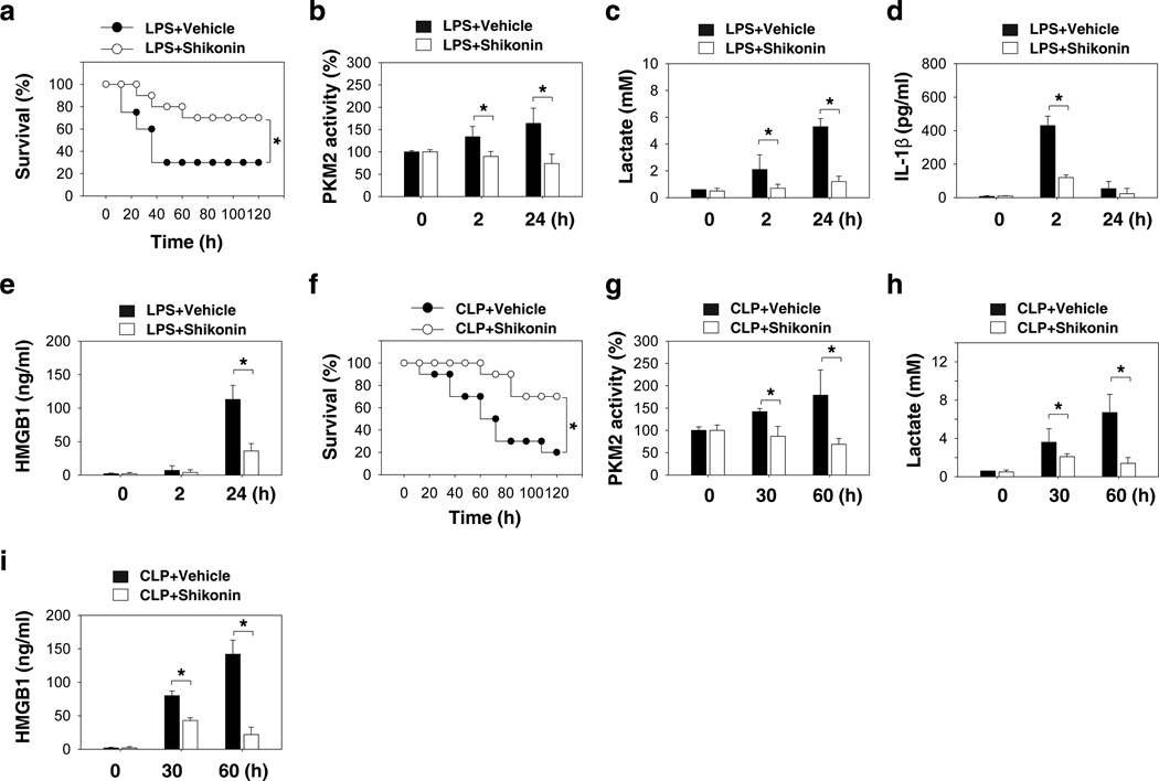 A potential PKM2 inhibitor shikonin protects mice from lethal endotoxemia and sepsis (a) Mice (n=20 group −1 ) were injected with a single dose of shikonin (8 mg kg −1 ), followed 30 minutes later by an infusion of endotoxin (LPS, 5 mg kg −1 , intraperitoneally), and were then re-treated with shikonin 12 and 24 hours later. The Kaplan-Meyer method was used to compare the differences in survival rates between groups (*, P