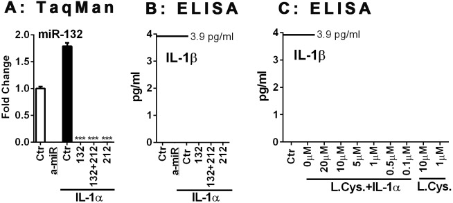 miR-132, miR-212 or the proteasome inhibitor lactacystin do not affect the expression of IL-1 in human astrocytes. Human astrocytes were transfected with specific or control anti-miR inhibitors (10 nM) for 48 h, and then stimulated with IL-1α for 24 h. (A) The expression of miR-132 was quantified by TaqMan real-time RT-PCR. Specific anti-miRs but not control anti-miR suppress miR-132 expression. (B) The culture supernatants were examined for the presence of IL-1β protein by sensitive ELISA with a lower detection limit of 3.9 pg/ml. There was no detectable IL-1β protein production in any of the human astrocyte cultures examined. (C) The effect of the proteasome inhibitor lactacystin on astrocyte IL-1β was examined. Astrocytes were treated with lactacystin at indicated concentrations with or without IL-1α, then cell lysates were subjected to ELISA after 24 h. IL-1β protein was undetectable under any conditions. Mean ± SD from triplicate cultures.