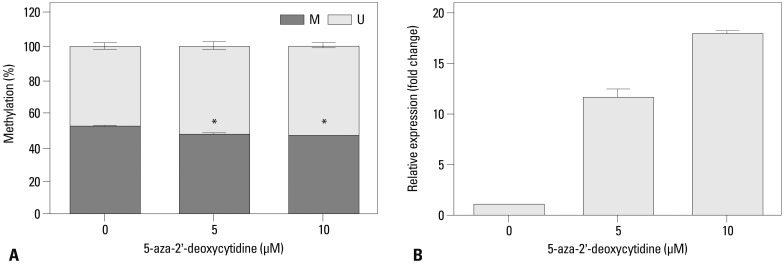 MUC13 expression changes following demethylation in SK-OV-3 cells. The SK-OV-3 cells were treated for 3 days with 0, 5, and 10 µM 5-aza-2'-deoxycytidine, respectively. After treatment with 5-aza-2'-deoxycytidine, the DNA methylation status at the -64 CpG site of MUC13 was analyzed using qMSP (A), and MUC13 mRNA expression was measured by qRT-PCR (B). Data are shown as the means±SD (n=3). Statistical analyses were performed using a one-way ANOVA and subsequent Bonferroni tests ( * p