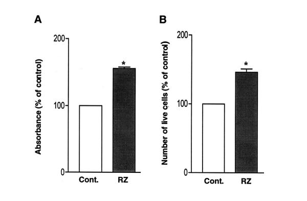 Effects of the ribozyme on proliferation of cardiac myocytes. Cells were infected with Ad-GFP/IGF2R-Rz or Ad-GFP, and then analyzed by MTT assay ( A ) and by cell counts ( B ). The data are average ± SE of at least four independent experiments (*, p