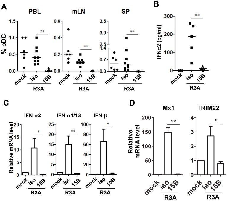 Pre-infection depletion of pDC abolishes IFN-I induction during acute HIV-1 infection in humanized mice. ( A ) Summarized data of pDC percentages in total human leukocytes (CD45 + ) from humanized mice are shown mice. Mice were treated with either 15B or isotype control (iso) antibody. After pDC depletion, mice were infected with HIV-R3A and terminated on 8 days post infection (dpi) for analysis. Mock infected mice, n = 6; isotype+R3A infected mice, n = 9; 15B+R3A infected mice, n = 12. ( B ) Plasma levels of IFN-α2 from mock, HIV-1 infected and 15B or isotype mAb treated mice were quantified by Luminex assays. Mock, n = 3; isotype+R3A, n = 5; 15B+R3A, n = 5. ( C ) The mRNA expression of major type I IFN genes in purified human cells (CD45 + ) from mouse spleens was measured by real-time PCR. ( D ) ISGs (Mx1 and TRIM22) expression in purified human cells (CD45 + ) from mouse spleens was measured by real-time PCR. Mock, n = 3; isotype+R3A, n = 5; 15B+R3A, n = 5. Mice were analyzed at 8 days post infection. Error bars in graphs indicate median value. Error bars indicate standard deviations (SD). * and ** indicate p