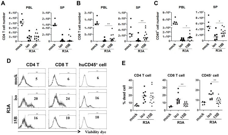 Pre-depletion of pDC reduces HIV-R3A induced death of human leukocytes. ( A ) CD4 T cell (CD3 + CD8 − ) counts in peripheral blood (PBL) and spleens (SP) of mock or HIV-R3A infected mice. ( B ) CD8 T cell (CD3 + CD4 − CD8 + ) counts in PBL and SP. ( C ) Human CD45 + leukocyte counts in PBL and SP. ( D ) Representative histograms show percentages of dead CD4 T cells, CD8 T cells and huCD45 + cells in spleens of mice infected with mock or R3A at 8 dpi. ( E ) Summarized data of D. mock, n = 6; isotype+R3A, n = 9; 15B+R3A, n = 12. Bars in all graphs indicate median value. * and ** indicate p