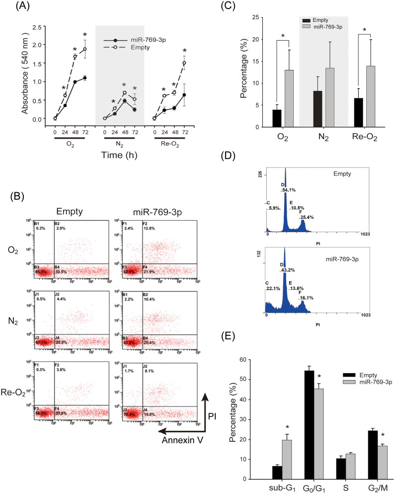 Overexpression of miR-769-3p suppresses proliferation and induces apoptosis of MCF-7 breast tumor cells. (A) MTT assays of MCF-7 cells overexpressing miR-769-3p in normoxia (O 2 ), hypoxia (N 2 ), and reoxygenation (Re-O 2 ). (B) A representative diagram of annexin V binding assay at 24 h of O 2 , N 2 , and Re-O 2 . Left panel: empty vector; right panel: MCF-7 cells overexpressing miR-769-3p. (C) Flow cytometry analysis for apoptosis at 24 h of O 2 , N 2 , and Re-O 2 . using annexin V and propidium iodide in MCF-7 cells overexpressing miR-769-3p. (D) A representative diagram of flow cytometry for analyzing cell cycle at 24 h of reoxygenation. Upper panel: empty vector; lower panel: MCF-7 cells overexpressing miR-769-3p. (E) Quantitative graph of flow cytometry results in panel (D) showing the percentage of cells in each phase of the cell cycle. *, P