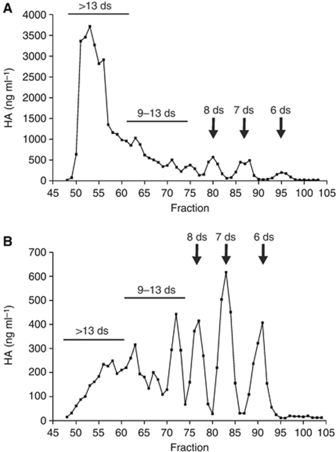 The profile of sHA fragments contained in TIF from MTLy (A) and MT-450 (B) tumours. Tumour interstitial fluid from multiple MT-450 or MTLy tumours was pooled and subjected to ultracentrifugal filtration through 10-kDa Amicon filters. The filtrates were concentrated in a Speed Vac, then applied to a Bio Gel P10 size-exclusion chromatography column (3.5 × 115 cm) and eluted with 0.3 M sodium phosphate buffer (pH 5.3). The HA concentrations in the eluted 3 ml fractions were determined by the HA ELISA-like assay. The column was calibrated by fractionating a partial HA digest under identical conditions, then determining the size of the HA oligosaccharides in the fractions using FACE analysis. The region in which HA fragments of a specific length were eluted is indicated in the diagram.