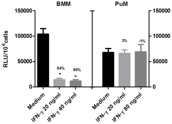 Impaired intracellular control of BCG growth by PuM upon IFN-γ treatment. BMM and PuM were infected with GFP-BCG. After infection, cells were left untreated or treated with IFN-γ (20, 40 and 80 ng/ml) for 48 h. Bacterial growth was evaluated by determining RLU. Data are shown as % reduction of phagocytosed bacteria evaluated as RLU. Values are means ± SD of the mean of a representative experiment from 3 independent experiments with 4 replicates each. The differences between groups of BMM and PuM were analyzed using a one-way ANOVA followed by Bonferroni's Multiple Comparison Test, * significantly different from medium control, P