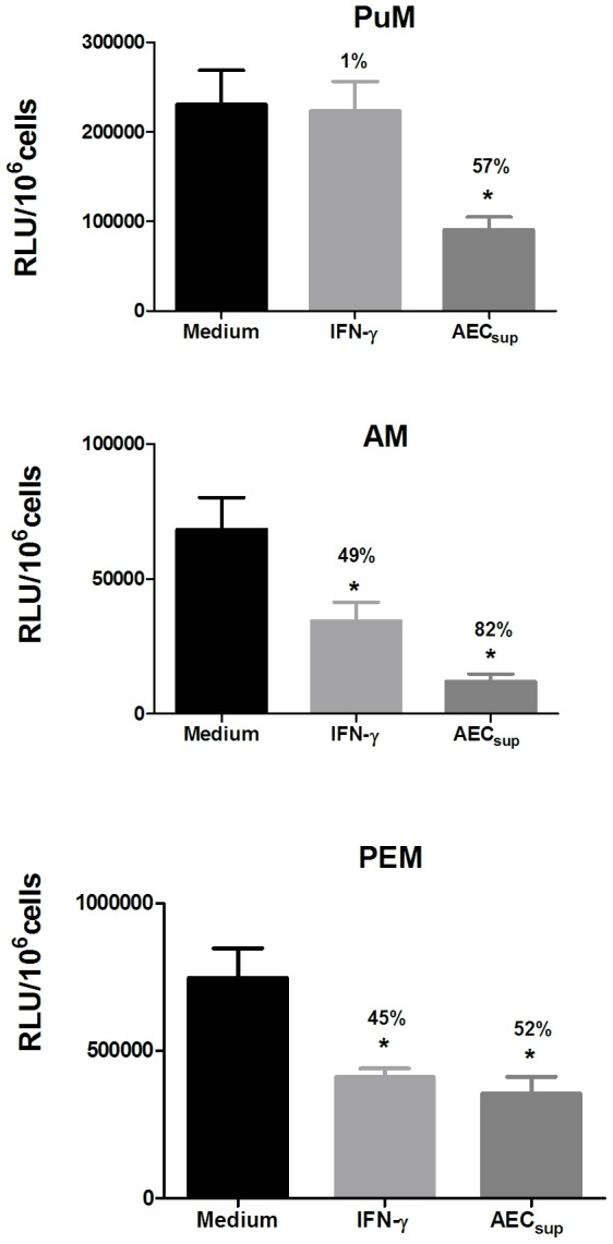 PuM are specifically unresponsive to IFN-γ in the control of intracellular bacteria. PuM, AM and PEM were infected with GFP-BCG. After infection, cells were treated with either IFN-γ or AEC sup for 48 h or left untreated. Bacterial growth was evaluated by determining RLU. Data are shown as % reduction of phagocytosed bacteria evaluated as RLU. Values are means ± SD of the mean of 2 independent experiments with 4 replicates each. The differences between groups of PuM, AM and PEM were analyzed using a one-way ANOVA followed by Bonferroni's Multiple Comparison Test, * significantly different from medium control, P