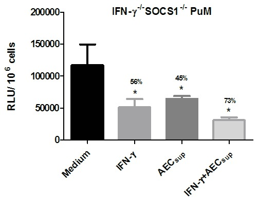 Impaired intracellular control of BCG growth by PuM upon IFN-γ treatment is regulated by SOCS1. PuM from IFN-γ -/- SOCS1 -/- mice were infected with GFP-BCG. After infection, cells were left untreated or treated with IFN-γ, AEC sup and IFN-γ + AEC sup for 48 h. Bacterial growth was evaluated by determining RLU. Data are shown as % reduction of phagocytosed bacteria evaluated as RLU. Values are means ± SD of the mean of a representative experiment from 2 independent experiments with 4 replicates. The differences between groups of IFN-γ -/- SOCS1 -/- PuM were analyzed using a one-way ANOVA followed by Bonferroni's Multiple Comparison Test. * significantly different from medium control, P