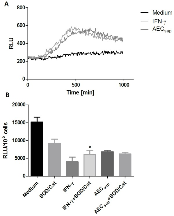IFN-γ and AEC sup induce an oxidative burst following infection with BCG. BMM were treated with IFN-γ (20 ng/ml) or AEC sup 24 h prior to infection and then infected with GFP-BCG. a) ROS production was monitored in the cultures for 16 h by measuring luminescence with luminol as substrate. b) The effect of incubating cells with superoxide dismutase (SOD) and catalase on intracellular killing of BCG is shown. Values are expressed as means ± SD from 5 wells. Differences between treatments with or without SOD/catalase were analyzed using a paired t-test. * significant effect of SOD/catalase treatment, P