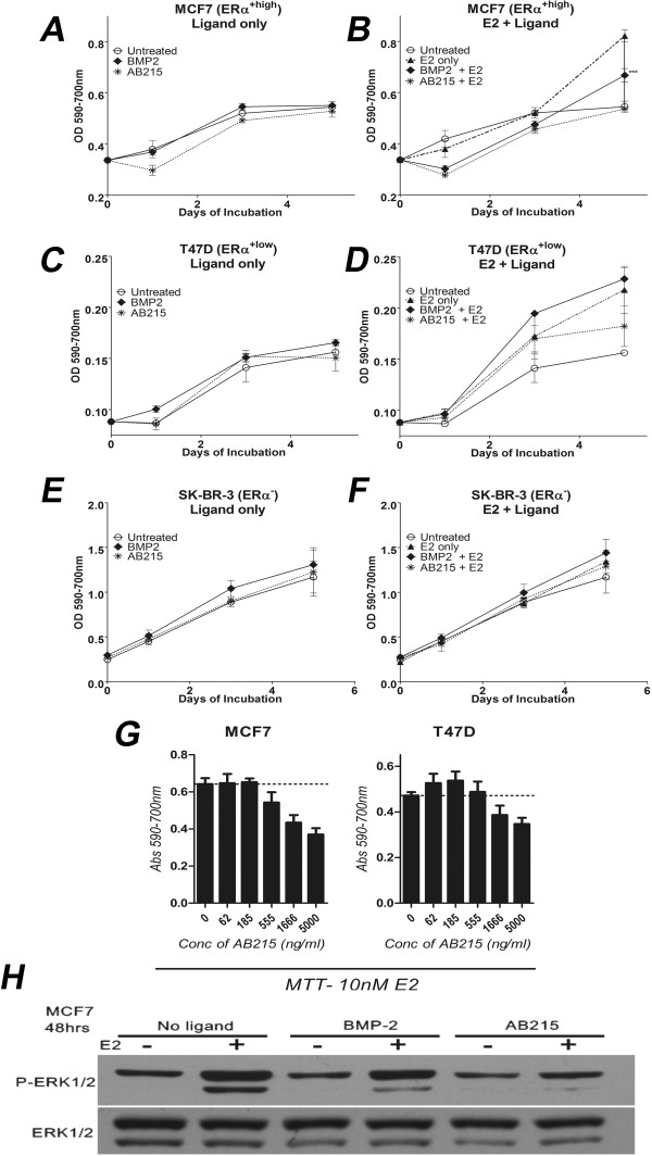 Anti-proliferative property of AB215 on ERα + breast cancer cells. A, B) ERα + : MCF7, C, D) T47D and E, F) ERα − : SK-BR-3, cells were grown in phenol red free RPMI1640 supplemented with 2% heat inactivated charcoal-stripped FBS treated with or without 10nM E2 along with 500 ng/ml BMP2 or AB215 in quintuplicate. Cell proliferation was analyzed by MTT assay (Abs590-700 nm) on 0, 1, 3 and 5 days after the treatment (n = 3). E2 and AB215 did not affect the proliferation of ERα − cells significantly. The results are presented as means ± SD and their significance has been analyzed by one-way ANOVA. G) MTT assay of MCF7 and T47D cells at increasing concentration of AB215 in the presence of 10nM E2. Cells were plated and treated as explained in Figure 2a-f. Cells were analyzed 4 days after the treatment. Data are shown in means + SD. H) Western blot analysis of E2 induced phosphorylation of ERK1/2. Cells were plated in phenol red free RPMI1640 supplemented with 5% heat inactivated charcoal-stripped FBS treated with or without 10nM E2 along with 500 ng/ml BMP2 or AB215. Cells were harvested and lysed after 48 hours of exposure for western blot analysis. ( * = P ≤ 0.05, ** = P ≤ 0.01, *** = P ≤ 0.001 ).