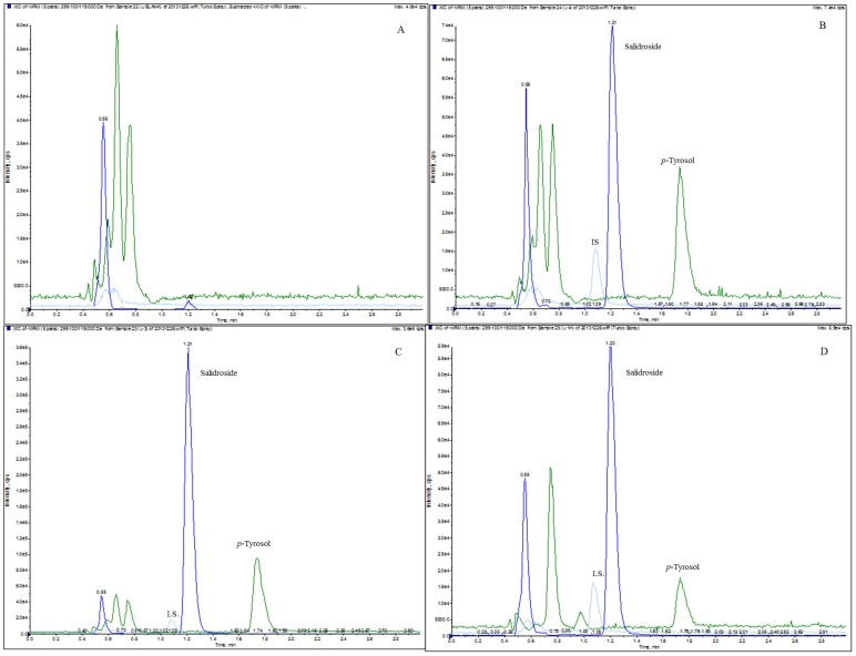 MRM chromatograms of salidroside, p -tyrosol and the IS in (A) a blank rat liver tissue homogenate sample, (B) a blank rat liver tissue sample spiked with salidroside (500 ng/mL), p -tyrosol (500 ng/mL) and the IS (200 ng/mL), (C) a rat liver tissue homogenate sample collected 0.17 h after i.v. administration of salidroside (50 mg/kg) with the IS (200 ng/mL), (D) a rat liver tissue homogenate sample collected 1 h after i.g. administration of salidroside (100 mg/kg) with the IS (200 ng/mL).