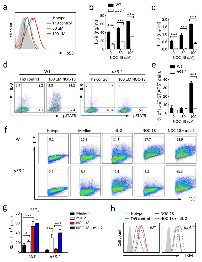 NO-induced up-regulation of Th9 polarization is p53-dependent. CD4 + T cells from WT and p53 −/− B6 mice were cultured under Th9 polarizing conditions ± NO. (a) The expression of p53 in WT Th9 cells on day 4 was analyzed by FACS. Concentrations of IL-9 (b) and IL-2 (c) in the culture supernatants of WT and p53 −/− cells on day 5 were determined by ELISA. (d, e) Percent of IL-9 + and pSTAT5 + T cells from WT and p53 −/− mice polarized under Th9 conditions was analyzed by FACS on day 4. Representative (f) and percent (g) of IL-9 + T cells from WT or p53 −/− mice cultured under Th9 conditions in the presence of NO with or without IL-2 are shown. (h) Expression of IRF4 in the Th9 cells from WT and p53 −/− mice polarized under Th9 conditions ± NO ± IL-2 was analyzed by FACS. Data are representative or pool of at least 3 experiments, mean ± SEM, n=3, *P