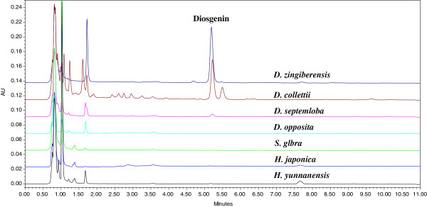 Typical UPLC chromatograms of plant samples using DAD at 203 nm.