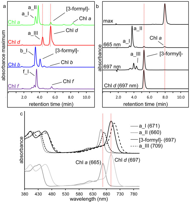 Reaction of monovinyl chlorophylls with β-mercaptoethanol in aqueous and methanolic environments. (a) Spectrum maximum (maximum absorbance reading at the range of 630–710 nm) RP-HPLC chromatograms of the aqueous buffer reaction mixture after reaction with β-mercaptoethanol using purified Chl a , Chl d , Chl b or Chl f as reactant. Dotted vertical lines mark the retention time of product a_III and Chl d . For more details regarding products a_I, a_II, a_III, b_I and f_I refer to the text and Table 1 . (b) RP-HPLC chromatograms of Chl a prior to (top panel) and following (two middle panels) reaction with β-mercaptoethanol in methanol, detected at indicated wavelengths. Chromatogram of Chl d from Acaryochloris (lower chromatogram) is shown for comparison with the chemically synthesised [3-formyl]-Chl a (Chl d ). Dotted vertical line marks the retention time of Chl d and Chl a . (c) Online spectra of the major derivatives synthesised from Chl a . The absorption spectra of Chl a and Chl d are plotted and their Q y maxima are marked with vertical lines for comparison with synthesised products. Q y maxima are indicated (in nm).