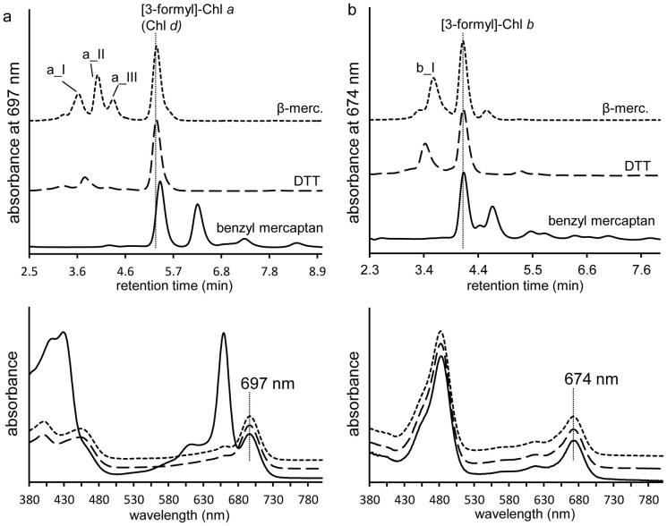 Dithiothreitol and benzyl mercaptan also facilitate the conversion of the C3 vinyl of Chl a (a) and Chl b (b) to a formyl. RP-HPLC chromatograms (top panels) demonstrate retention times of the 3 1 -formyl derivatives of Chl a and Chl b were identical and are marked with vertical lines. Spectra (bottom panels) were identical to the 3 1 -formyl derivatives formed in the presence of β-mercaptoethanol (β-merc.). Note, in the case of the reaction of Chl a with benzyl mercaptan, another product spectrally similar to Chl a has a similar retention time to Chl d , causing the mixed online absorption spectrum. Q y for [3-formyl]-Chl a (Chl d ) and [3-formyl]-Chl b are marked. Dotted line, β-mercaptoethanol; dashed line, dithiothreitol; solid line, benzyl mercaptan.