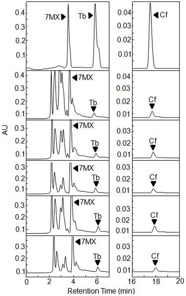 HPLC analysis after expression in E. coli of TCS1 or one of its putative active site mutants by using pGEX-4t-2 vector. (a) The trace shows the authentic standards run in parallel. (b) The trace shows the original TCS1 enzymatic reaction products. (c to f) show the HPLC analysis of the reaction products from the mutants TM1 to TM4. Black arrowheads indicate reaction products.