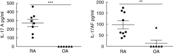 Interleukin (IL)-17A, F and AF responses in purified CD3 + T cells from peripheral blood monuclear cells (PBMCs) or synovial fluid mononuclear cells (SFMCs). Purified CD3 (+) T cells from patients with rheumatoid arthritis (RA) ( n = 9) or osteoarthritis (OA) ( n = 6) were stimulated with phorbol myristate acetate (PMA)/ionomycin for 24 h and IL-17A, IL-17F and IL-17AF were analysed in culture supernatant by enzyme-linked immunosorbent assay (ELISA). ** P