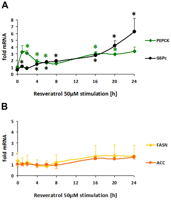 FOXO targetgene-expression in HepG2 (human hepatoma) cells modulated by polyphenolic resveratrol in a time-dependent course. A–B: HepG2 cell cultures grown in EMEM + FBS 10% and starved for 16 h without FBS were stimulated with resveratrol 50 µM in 0.125% DMSO in EMEM for 1–24 h. RNA was extracted with Nucleospin RNA II isolation kit and reverse transcribed with the High capacity cDNA reverse transcription kit for quantitative realtime PCR (qRT-PCR) in triplicates using the Power SYBR green PCR master mix with primers pairs described in Table 1 . Modulated mRNA levels normalized to ribosomal protein (RPL32) housekeeping gene are shown as fold mRNA of basal expression in mock stimulated HepG2 means ± SEM (n = 3) of 3 independent experiments with different passages of HepG2 with significances (t-test) versus DMSO-control *p