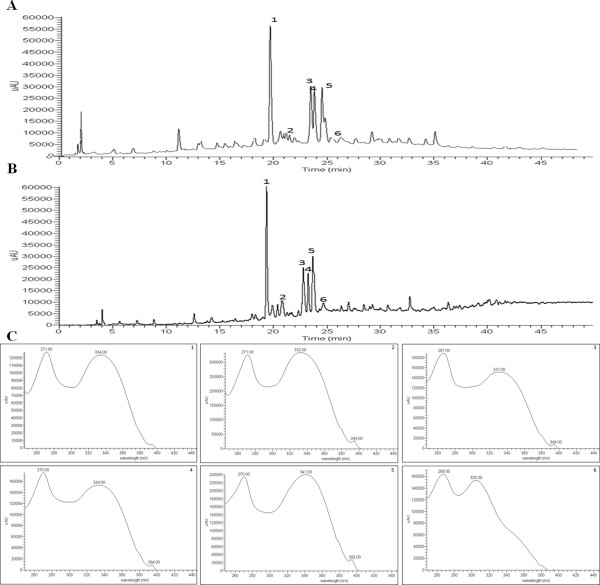 HPLC-DAD-ESI/MS n. analysis of crude extracts (CEs) from the roots of Erythrina falcata using a C18 Luna column (A, B). The chromatogram was recorded at 254 nm (A) and the TIC was in negative mode (B) . The UV spectra of compounds 1–6 (C) .