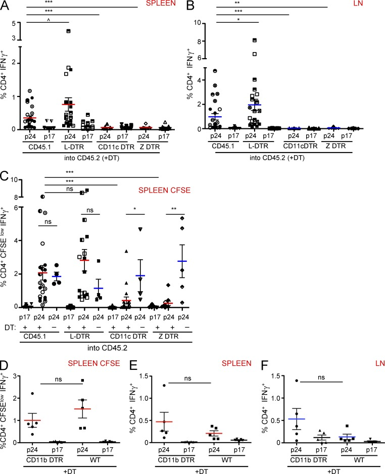 ZBTB46-dependent classical DCs are required for s.c. protein immunization. (A–C) CD45.2 mice were irradiated and reconstituted with bone marrow as indicated. Chimeras received DT on day −3 and −1 to prime and boost immunization with 0.5 µg αCD205 gag-p24. Intracellular cytokine staining immediately ex vivo for (A) Spleen and (B) LN. Black shows staining for p17 peptide control (plus DT) versus red or blue (plus DT) p24 peptide challenge. (C) CFSE dilution of splenocytes after 4 d in culture. (A–C) Pooled from 4–5 independent experiments ( n = 3–5 mice per group, based on survival after DT administration). No DT controls (blue) performed once across all 4 groups ( n = 4–5 mice per group). Error bars show mean ± SEM. ^, P ≤ 0.1; *, P ≤ 0.05; **, P ≤ 0.01; ***, P ≤ 0.001). (D–F) CD11b DTR versus B6 control mice were administered DT on day −3 and −1 to prime-boost immunization with 0.5 µg αCD205 gag-p24. CFSE dilution of splenocytes after 4 d in culture (D) and intracellular cytokine stainings (E–F). Black shows staining for p17 peptide control (plus DT), red or blue (plus DT) show p24 challenge in wild-type and controls. One representative experiment of n = 4–5 mice per group. Error bars show mean ± SEM. *, P ≤ 0.05; **, P ≤ 0.01; ***, P ≤ 0.001.