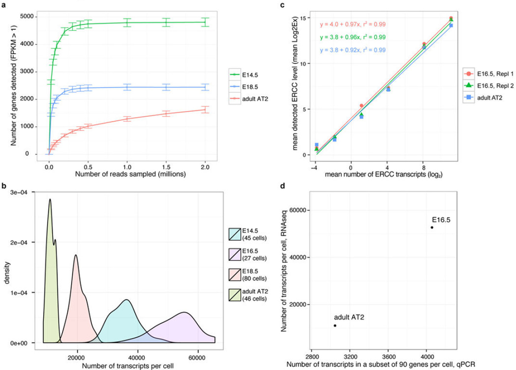 The number of unique genes and the total number of transcripts expressed by a single cell strongly correlates with its differentiation state (a) Saturation analysis of single cell RNA-seq data of lung epithelial cells at different embryonic and adult time points (E14.5, E18.5, adult AT2) reveals that the number of unique genes expressed by single lung epithelial cells decreases with progressing differentiation state. Distal lung epithelial cells at E14.5 express over 6000 genes, whereas cells at E18.5 express approximately 3000 and mature AT2 cells only around 2000 genes. Each point on the saturation curve was generated by randomly selecting a number of raw reads from each sample library and then using the same alignment pipeline to call genes with mean FPKM > 1. Each point represents four replicate sub-samplings. Error bars represent standard errors. All libraries were sequenced to a depth of at least 2 million reads. (b) Single cell RNA-seq reveals that the total number of transcripts expressed by single cells decreases with increasing differentiation state of the cell. Number of transcripts per cell were calculated from the FPKM values of all genes in each cell using the correlation between number of transcripts of exogenous spike-in mRNA sequences and their respective measured mean FPKM values (exemplary calibration curves are shown in Extended Data Figure 3c for three replicates at E18.5). Area normalized density distributions are shown for embryonic cells at E14.5 (45 cells), E16.5 (27 cells), E18.5 (80 cells) and for 46 Sftpc + adult AT2 cells. The number of transcripts is highest in lung epithelial progenitor cells at E16.5 and E14.5 and decreases in cells at E18.5 and even further in mature AT2 cells. Note that single cell RNA-seq libraries for E14.5, E18.5 and adult AT2 cells were sequenced to a depth of 2-6 million reads, whereas the libraries for cells at E16.5 were sequenced to a lower depth of 100,000-550,000 reads. (c) Calibration of Ct values measure
