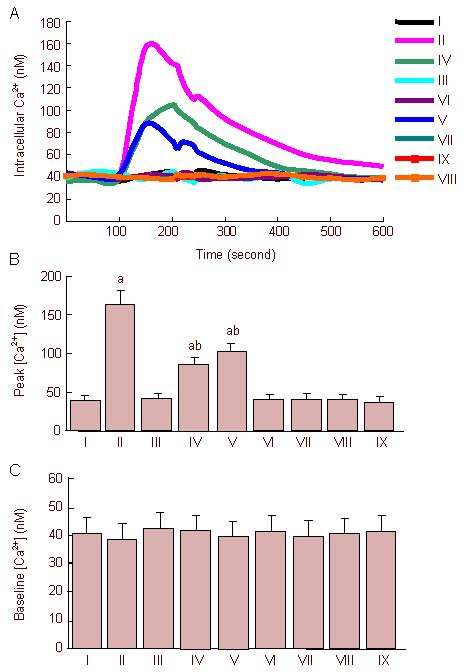 Changes of Ca 2+ concentrations induced by 0.75% isoflurane (Iso) in hippocampal neurons. (A) Representative changes of intracellular calcium concentrations induced by 0.75% Iso. (B) The peak concentrations of intracellular calcium induced by 0.75% Iso. a P