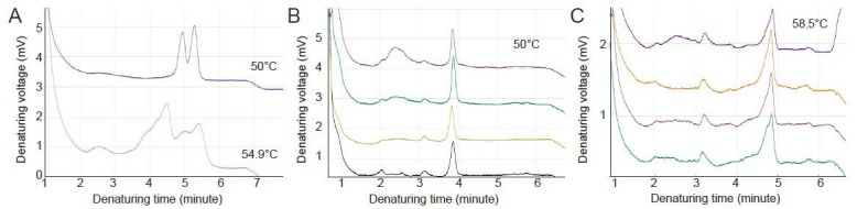 Sequence alterations detected by denaturing high-performance liquid chromatography analysis. Analysis of GRID2 PCR products for exon 5 (A) or exon 9 (B, C) (including flanking sequences) was performed using the <t>WAVE</t> 3500 <t>DNA</t> Fragment Analysis System. (A) Double peaks at the non-denaturing temperature (50°C) (upper) and multiple peaks at partially denaturing temperature (54.9°C) (lower) were detected in exon 5, indicating the presence of a mixture of two fragments with different sizes. (B) Exon 9: Homogeneous peak at the non-denaturing temperature (50°C). (C) Exon 9: Heterozygous duplexes at partially denaturing temperature (58.5°C), indicating the presence of a point mutation within the exon.