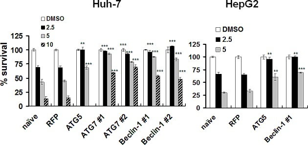 Protection of HCC cells from lapatinib-induced cytotoxicity by the knockdown of autophagy-related proteins. After transduction with shRNA expression lentivirus as indicated, Huh7 or HepG2 cells were selected and were treated with DMSO or 2.5 - 10 μM lapatinib for 48h, and then the relative percentages of growth inhibition were detected using the MTS assay and calculated as described in Fig. 1