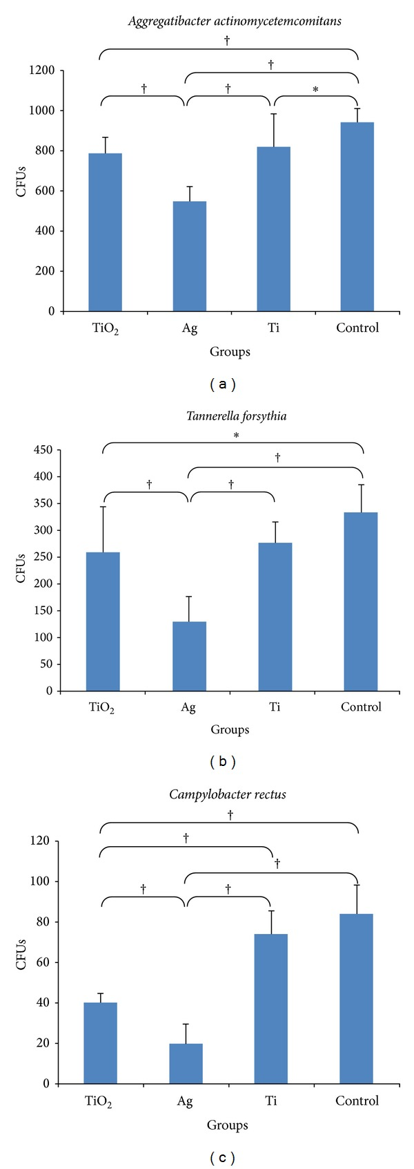 Descriptive analysis of adhesion of (a) A. actinomycetemcomitans , (b) T. forsythia , and (c) C. rectus on all groups tested (Group TiO 2 : as-annealed TiO 2 nanotubes; Group Ag: as-annealed Ag doped TiO 2 nanotubes; Group Ti: commercially pure Ti sheet; Control Group: 24-well cell culture plate bottoms). Data are presented as the mean ± SD (standard deviation). Results were analyzed using a one-way ANOVA and post hoc analyses were performed using Tukey's studentized range (HSD) test (* P