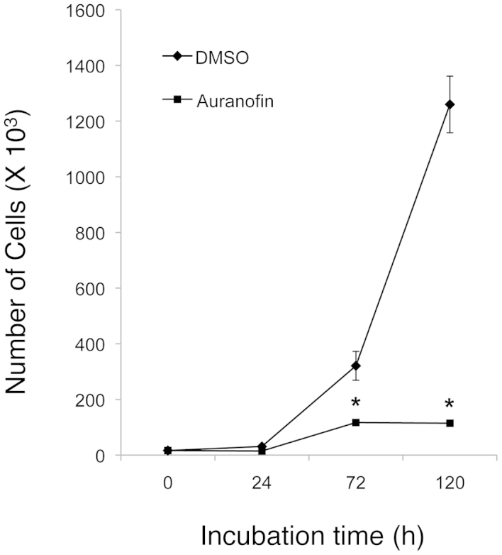 Auranofin inhibits cell survival or growth of SKOV3 cells. The cell numbers were determined by the cell counting assay after SKOV3 cells (1×10 4 cells/plate) were treated with auranofin (100 nM) or the control (DMSO) for 0, 24, 72 and 120 h. The significant P-values between the auranofin group versus the control group are indicated ( * P