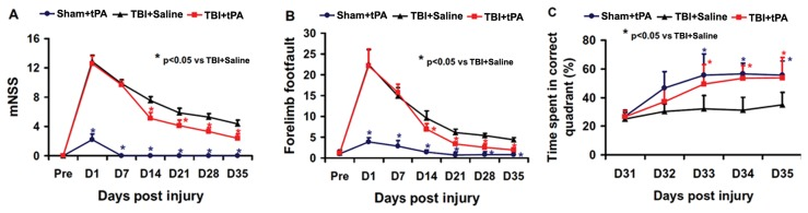 tPA effect on functional outcome. tPA significantly lowered the mNSS scores (A) and reduced frequency of foot faults (B) from Day 14 to 35 after TBI compared to the saline group. tPA treatment significantly improved spatial learning performance from Day 33 to 35 after TBI compared with the saline group (C). * p