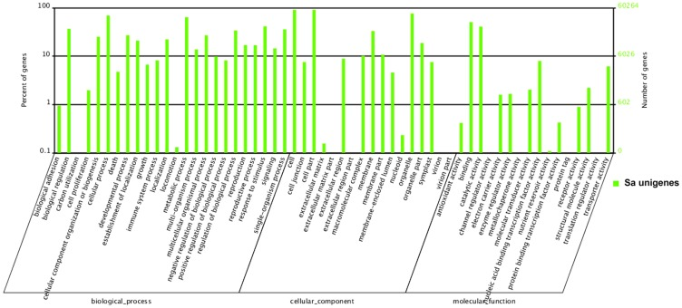 Gene Ontology (GO) analysis of <t>transcriptome</t> associated with flower development of S. arvensis . (The percentage and distribution of top-level GO-terms were portrayed in the three categories: Biological process, Cellular component and Molecular function.). Gene Ontology classifications of assembled unigenes, and 76,324 unigenes with significant similarity in Nr protein databases were assigned to gene ontology classifications.